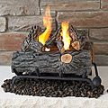 Real Flame 18-inch Convert-To-Gel Log Set | Overstock.com