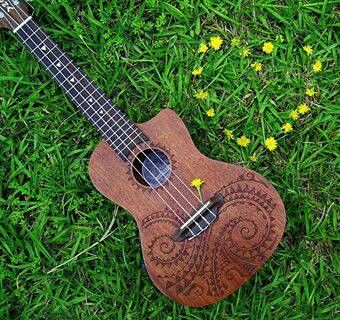 -Luna ukulele- I've always wanted one of these! ^_^