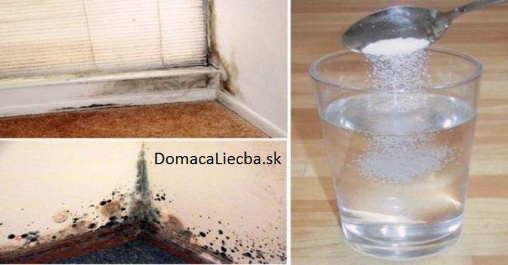 Pleseň v kúpeľni, sprche či kuchyni môže vážne ohroziť zdravie vašej rodiny. Ak máte problém ju odstrániť s bežnými čističmi, použite toto.