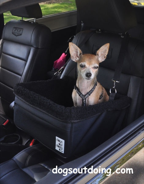 Small Black Dog Car Booster Seat Lining