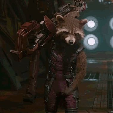 """I got Rocket From """"Guardians of the Galaxy"""" THE ONLY THING I CHANGED WAS THE SEASON I LIKED BUT OKAY"""
