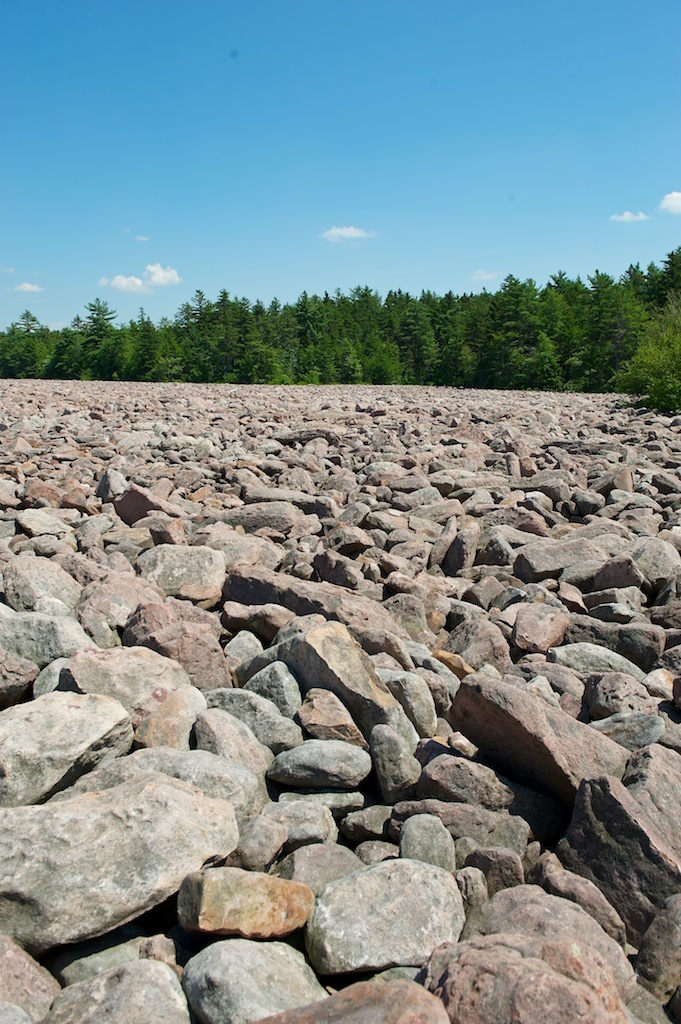 Explore Boulder field at Hickory Run State Park in the #PoconoMtns!