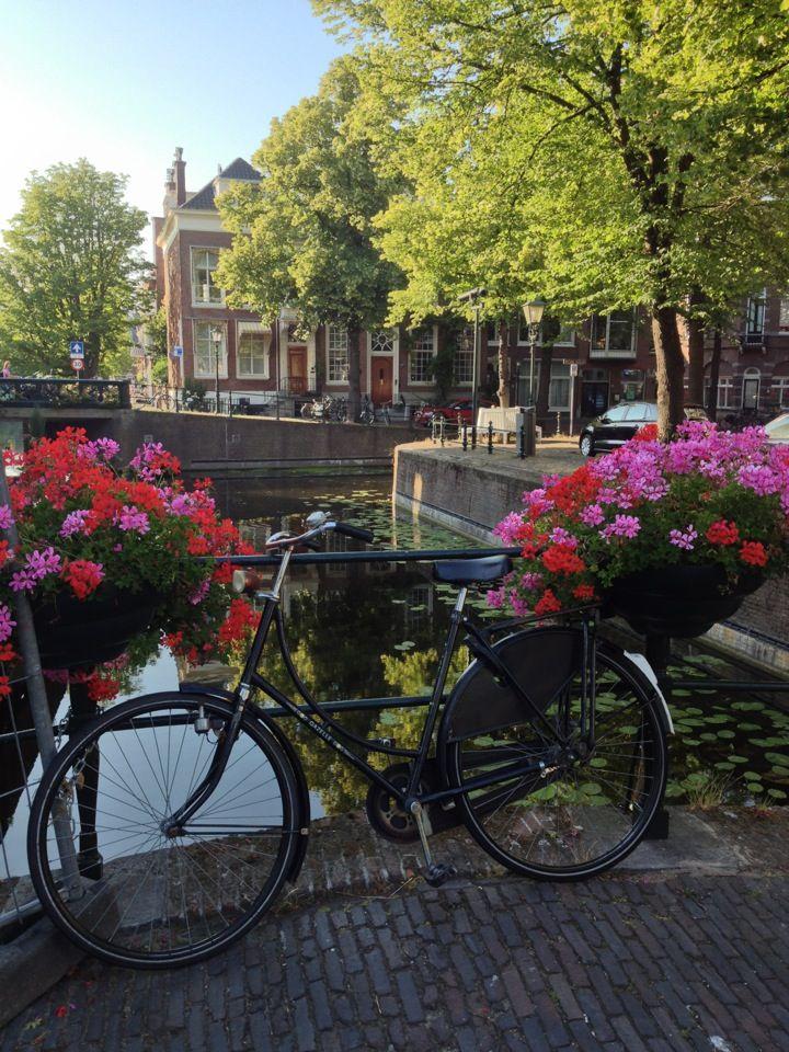 Zo typisch Nederland, het zou zomaar een centrum van een willekeurige stad kunnen ziin dit is den Haag maar het had net zo goed delft, leiden, Amsterdam, alkmaar, gouda, Maastricht etc kunnen zijn. Bovendien doet me dit denken aan het meisje van 3 jaar dat bij papa achterop de fiets elke zaterdag naar de markt ging om een haring te happen zo geweldig