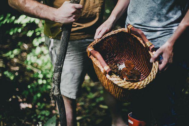 foraging | Beth Kirby | {local milk}
