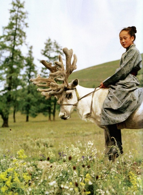 Some people horseback ride, she rides a reindeer. She wins.