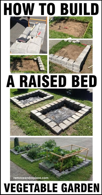 Vegetable garden diy how to build a raised bed vegetable for Building a raised vegetable garden