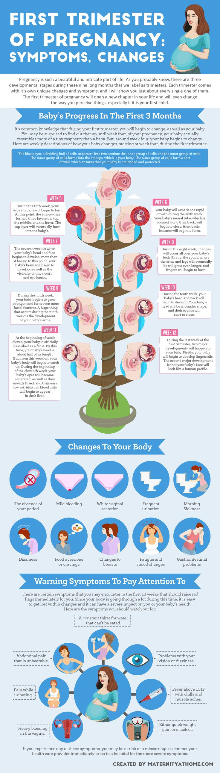 Your body is going to change a lot during the first trimester of pregnancy! | Southern Illinois OB/GYN | 618-529-4711 or (618) 998-8808 www.siobg.com |