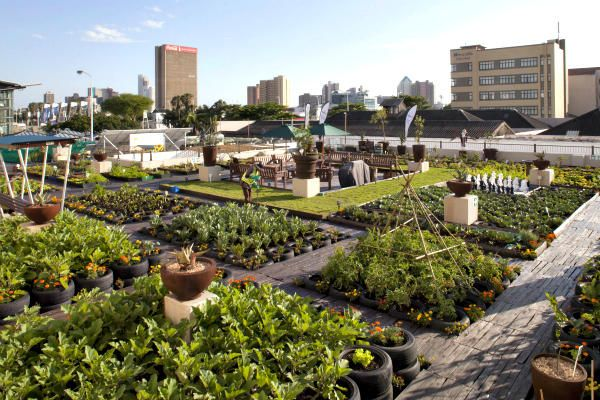 A rooftop garden on a building in Durban, South Africa. In Johannesburg a nonprofit group is using rooftop gardens to teach farming skills to urban youths and to inform them about the effects of global warming.