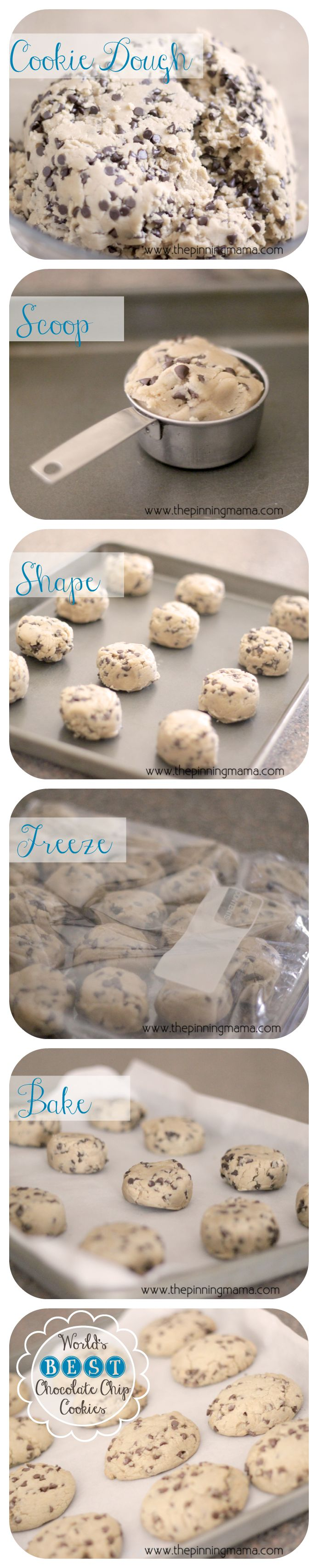 Copycat Panera Chewy Chocolate Chip Cookie- some of the best cookies I've ever made!!