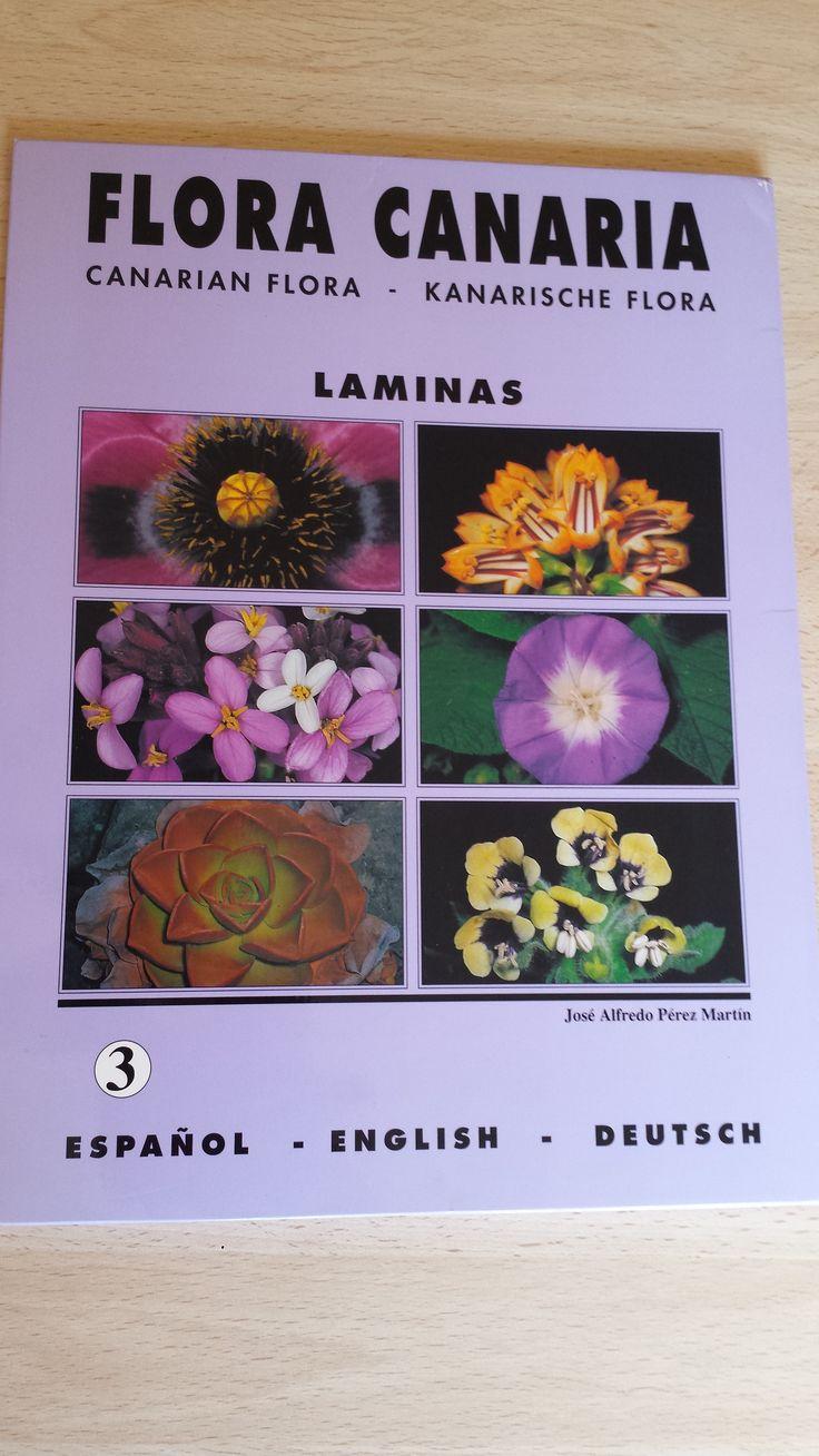 20 láminas de Flora Canaria. Canarian flora. Kanarischen Flora. Carpeta 3. Disponible en Ebay: http://www.ebay.es/itm/20-laminas-de-Flora-Canaria-Canarian-flora-Kanarischen-Flora-Carpeta-3-/122057334020?hash=item1c6b2f1d04:g:~7cAAOSwMHdXQwh1