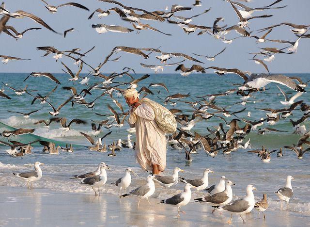 Mirbat photos by Oman Tourism