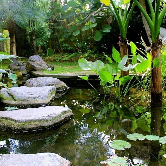 Joglo pond at Dea Villas Bali. Natural stone stepping through the pond. By Bali Landscape  Company  http://ift.tt/1QzTwns  #pond #watergarden #stone #stepping  #landscape #landscapedesigner #landscapearchitecture #gardenlovers #taman #tropicallandscape  #balilandscaper #landscapecontractor #gardenlovers #tropicaldesign #tropicallandscape  #landscapearchitect #garden #gardenideas #gardeninspiration #instagarden #gardendesign #landscapedesign