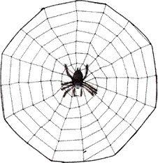 Mathwire.com | Spider Math