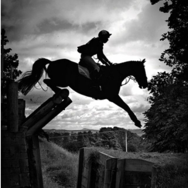 """""""Sometimes you can trust a horse, sometimes you can't, and sometimes you have to."""" -"""