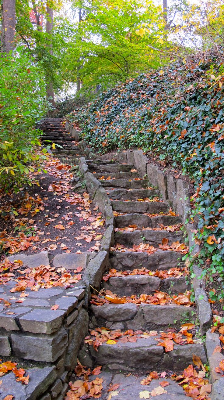 Stairs At Falls Park In Autumn Greenville Sc
