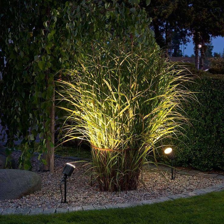 10 best garden lighting ideas for