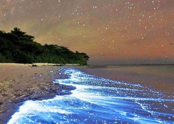 ハネムーンに大人気♡モルディブの人気のリゾート「フヴァフェンフシ」と「光る砂浜」って知ってる?のトップ画像
