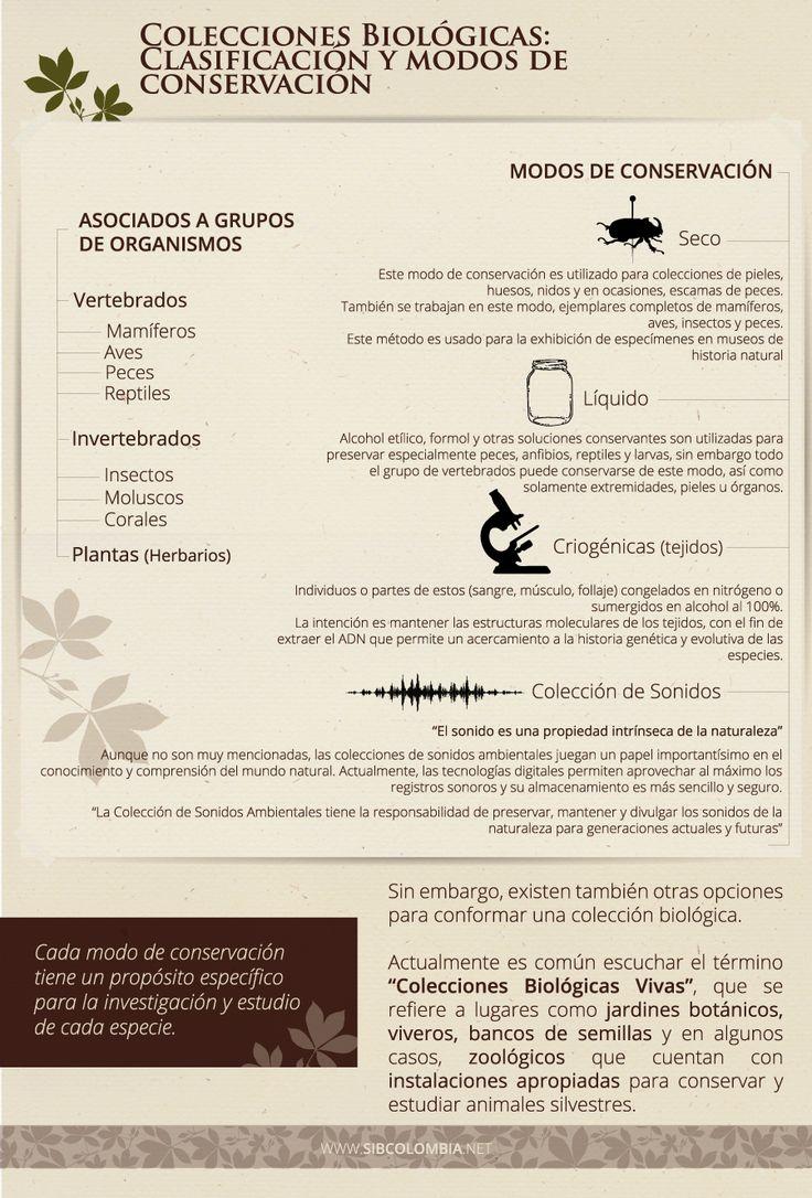 """Fuentes:  - Borja Sanchíz, """"Manual de Catalogación y Gestión de las Colecciones Científicas de Historia Natural"""" Madrid, 1994 - Instituto Alexander Von Humboldt, """"Protocolos de la Colección de Sonidos Ambientales"""" Version. 1. 2013"""