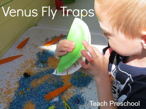 Venus Fly Trap by Teach Preschool