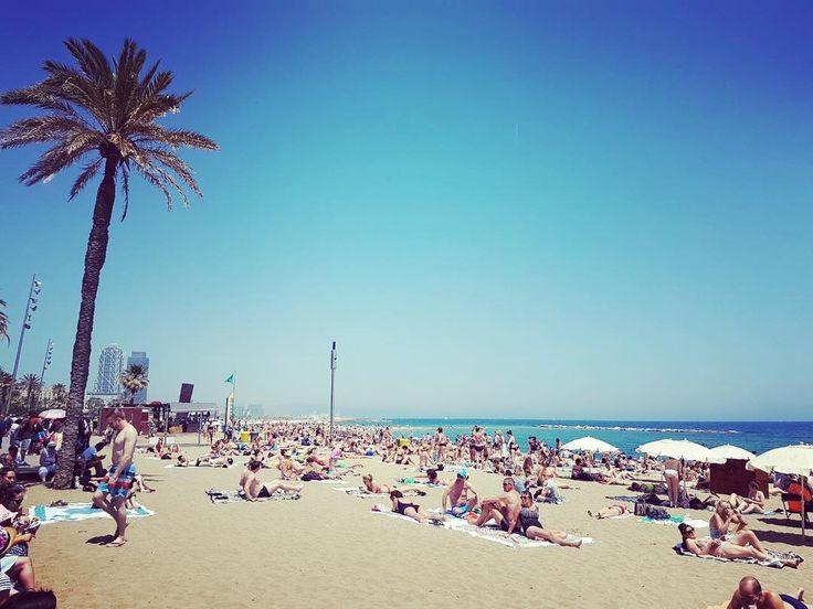 Ogni viaggio lo vivi tre volte: quando lo sogni, quando lo vivi e quando lo ricordi #beach#dream#barcelona#barcellona#españa#sea#spiaggia#palm#like4like#follow4follow#trip#travel#landscape http://tipsrazzi.com/ipost/1524764901266980998/?code=BUpDZliAICG