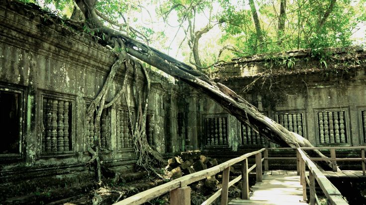 Beng Melea - Angkor Wat - For more on Angkor Wat travel check out http://ajourneyintotheunknown.com/angkor-wat-best-temples/