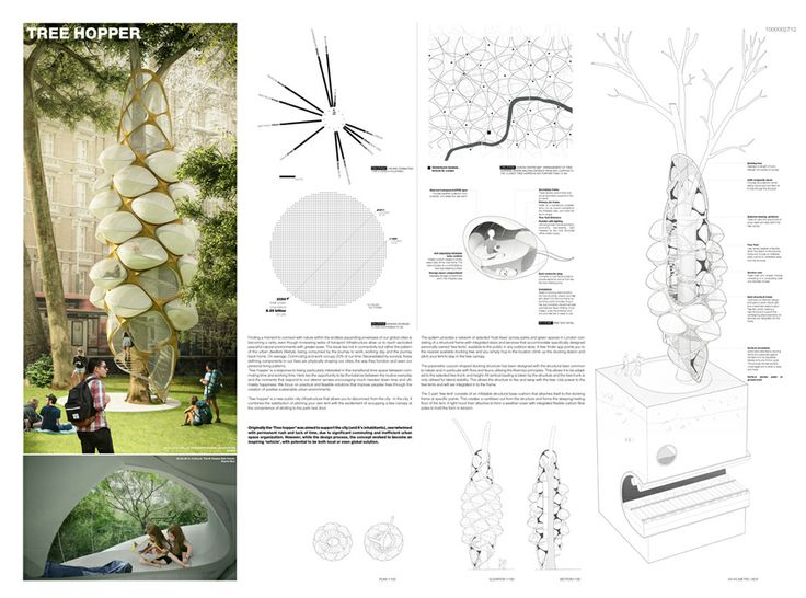 Best Results Of The Competition Triumph Architectural Treehouse