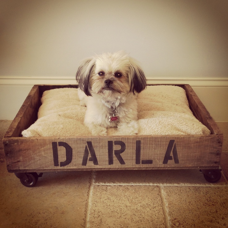 Crate dog bed crate with casters that lock from lowes spraypainted oil rubbed bronze with name - Bed casters lowes ...