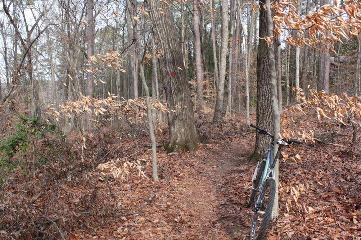 Waterworks / Mason Mill Mountain Bike Trail in Atlanta, Georgia || SINGLETRACKS.COM
