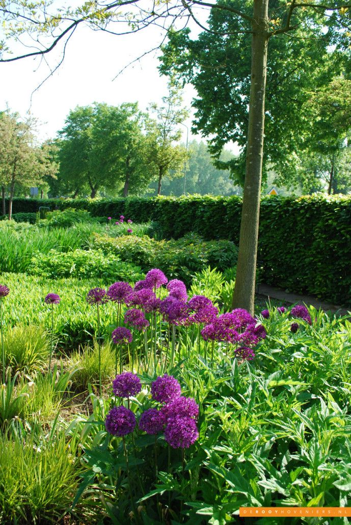 Tuin idee De Rooy Hoveniers bloementuin border stijlvolle tuin Dussen
