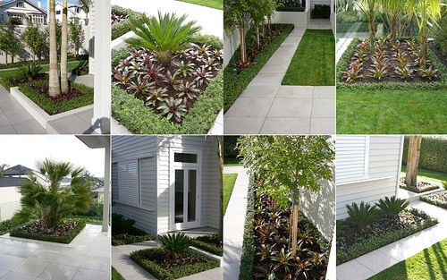 Landscape by Proscape, Auckland, with the versatile Living Edge™ instant hedges