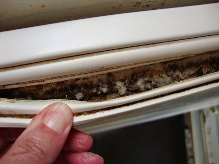 super clean tip:Πως να καθαρίσετε το λαστιχο του ψυγείου  από μούχλα και βρωμιες