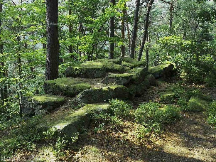 Die Heidenmauer auf dem Odilienberg im Elsass. Viele Mythen rank(t)en sich um die Heidenmauer auf dem Odilienberg (F) bis vor kurzem wurde das Alter noch auf das Jahr 0 datiert doch vor einiger Zeit tauchten Holz-Zapfen auf die einst die Quader der Mauer verbanden diese datieren auf das Jahr 600-700 n.Chr..  Auch wenn die Mauer dann nur 1300 Jahre alt ist hat sie nichts an ihrer Faszination verloren über eine Länge von rund 10 Kilometern schraubt sie sich um den Berg. Wäre die Mauer…