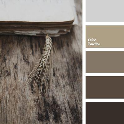 Color Palette #1008