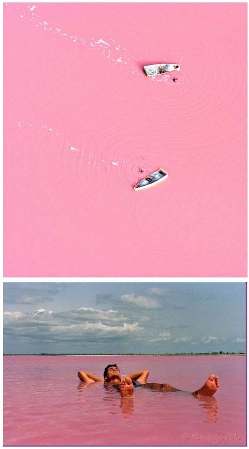Lake Retba, Senegal or as the French refer to it Lac Rose, is pinker than any milkshake you've ever come face to straw with. Experts say the lake gives off its pink hue due to cyanobacteria, a harmless halophilic bacteria found in the water. Lake Retba also has a high salt content, much like that of the Dead Sea, allowing people to float effortlessly in the massive pink water.