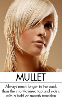 Originating in the early 1980's the Mullet remains both loved and scorned by both sexes. The classic Mullet is defined by hair on the top and sides cut in short layers while the back is grown much longer. The transition can be abrupt or seamless and overall lengths vary considerable, as does body and texture.