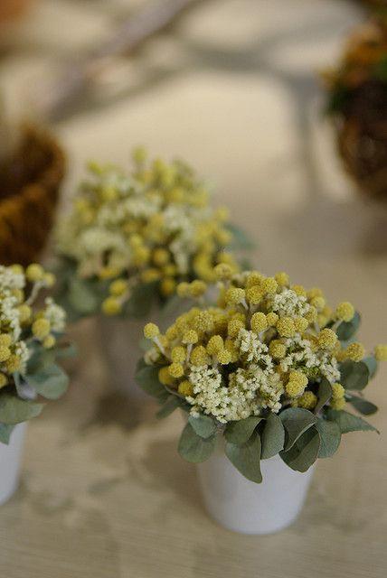 dried flower arrangements | Dried flower arrangement | Flickr - Photo Sharing!