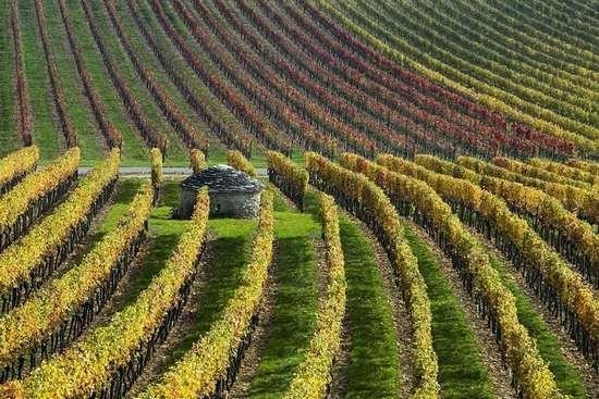 autunno 5 - valle della loira