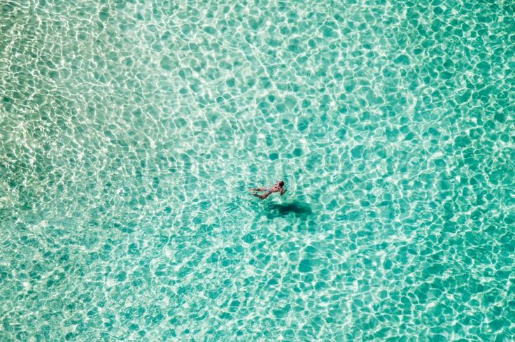 Lone Swimmer Bondi Beach 2t1w6950