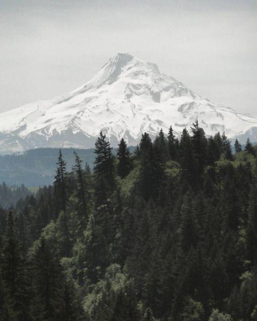 wildesdorian:  carrie-outdoors:  Found Mount Hood!  (at...