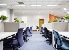 I MOP London provides reliable services for office cleaning in Ealing at affordable rates. Get your work place neat and clean by professional hands.