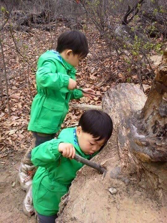 #Cr.Daehan Minguk ManSe# Thailand FB #Song's Cute Triplets