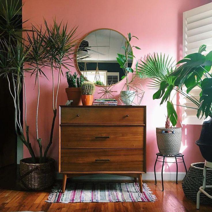 interiors + exteriors | pink walls, big round mirror, plants galore