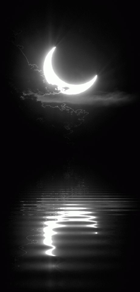 Motion Graphic: Moonlight dancing on the water.
