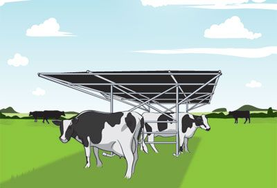 Build a portable shade shelter to keep your cattle and other livestock cool in the heat of summer. Illustration by Tom Kimball (HobbyFarms.com)