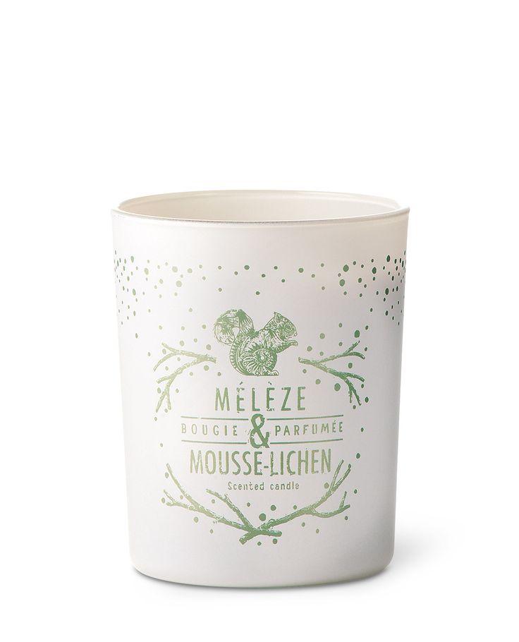 Bougie parfumée 40h mélèze, mousse et lichen - Bougies La Française