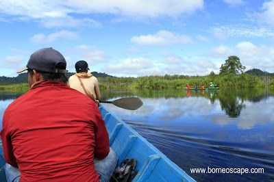 Kekayaan Alam Danau Merebung, Meliau, Kapuas Hulu   BorneoScape