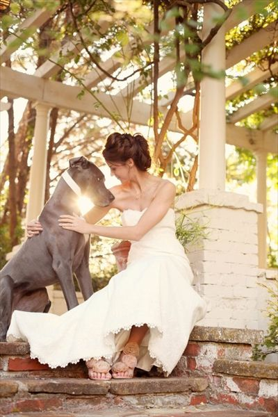 Wedding pics with ur pups...joe and I are totally doing pics like this after our wedding. Our photo package came with engagement pics that we dont need so he said we could do whatever we want instead and I need pics with my pups :)