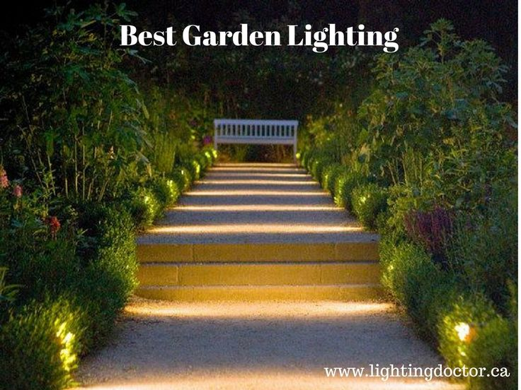 Choose Best Garden Lighting Canada Doctor Is The Company In Calgary That Provide Your Attract Fol