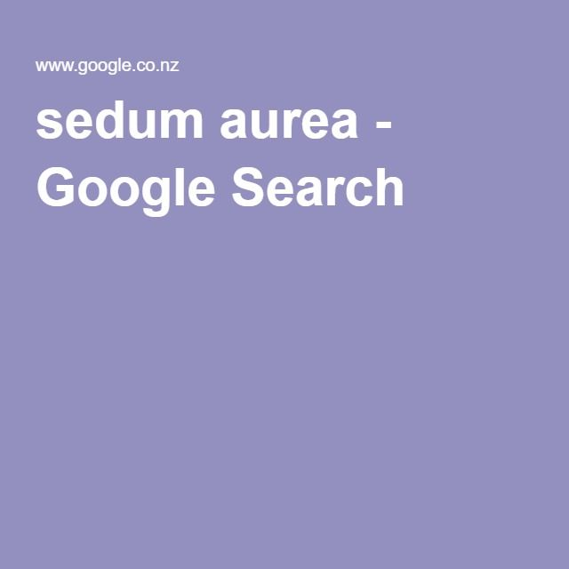 sedum aurea - Google Search