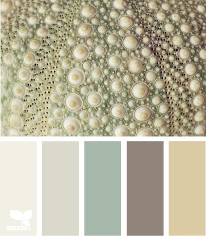 Cores para sala!  This palette would create such a calming vibe in a bedroom.... paint most of the walls the cream color at the end and paint an accent wall with the smoky purple color. Bed covering in the very soft, pale purple-gray and use the muted grey toned green for accent colors like throw pillows, vases, etc.